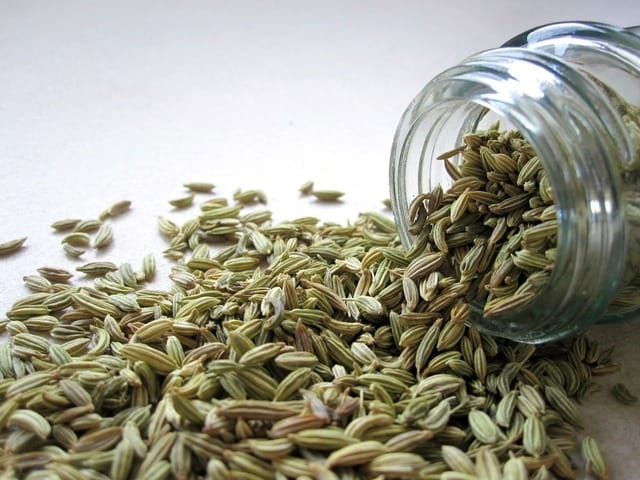 fennel seeds tarragon substitutes